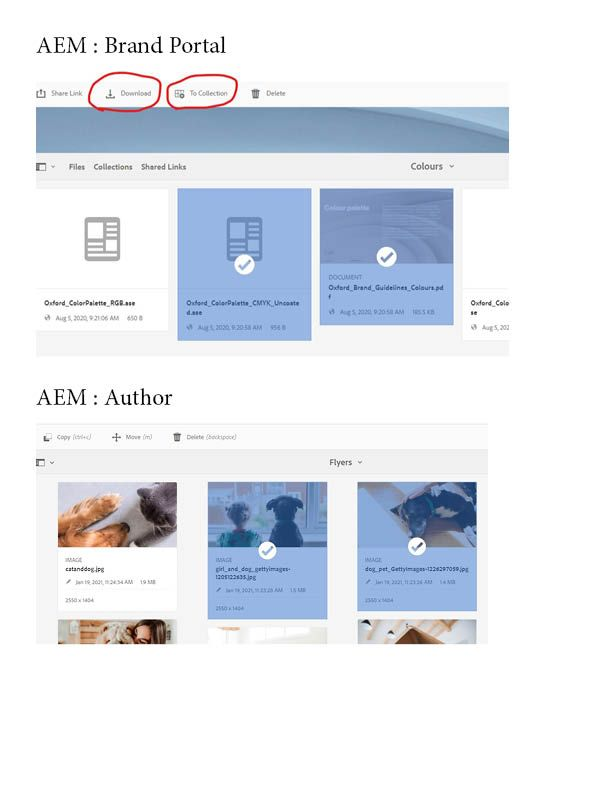 BrandPortal-vs-Author.jpg